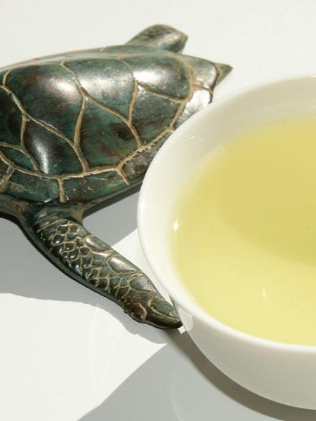 Shincha Tea 1