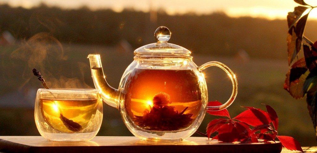 wisdom in a teacup