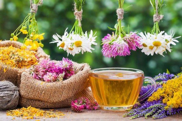 calming teas